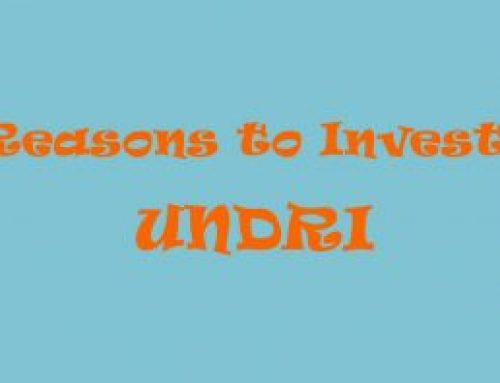 8 Reasons to Invest in Undri