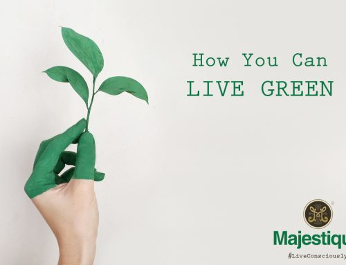 Green Living – Part 1