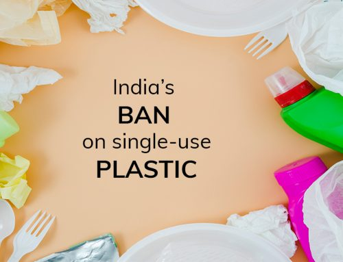 India's Ban on Plastic – Tips to Live a Plastic-free Life!